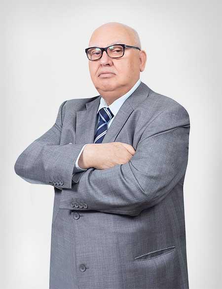 Mohamad Seoudi - Active